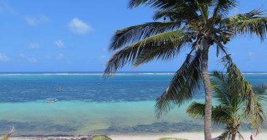 Profitez de plages ensoleillées et tropicales durant votre séjour au Kenya